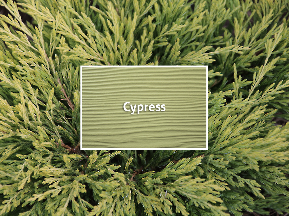 Cypress Siding Allura Cement Siding Color Review
