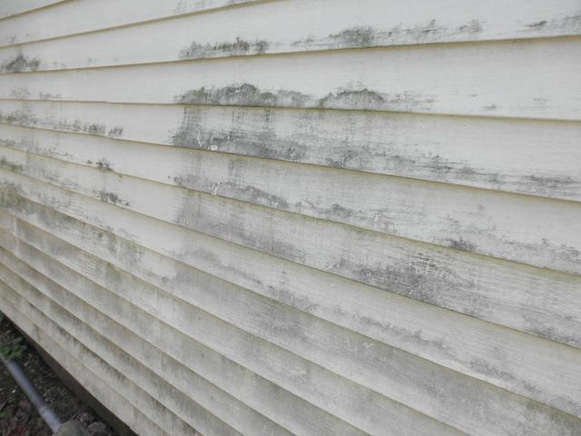 Health Concerns Associated With Vinyl Siding